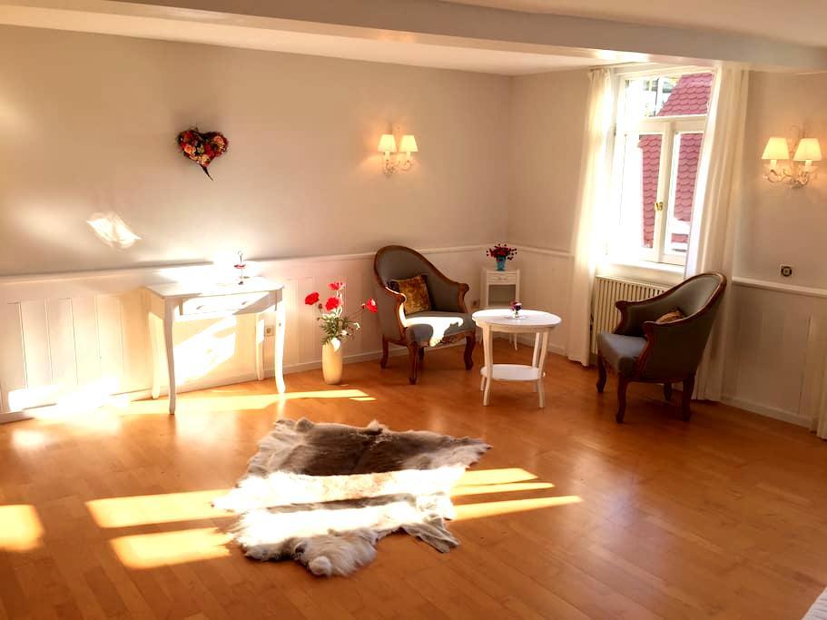 Die Auszeitwohnung - Sinsheim-Hilsbach  - Apartamento