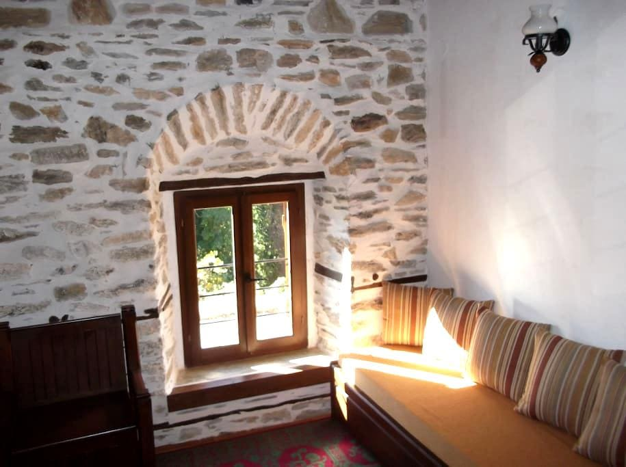 Πέτρινο αρχοντικό - vizitsa - Townhouse