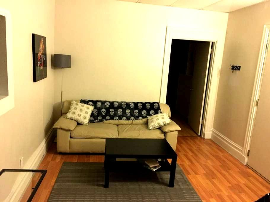 Huge private 2 bedroom 1 bath apartment. Shadyside - Pittsburgh - Appartement