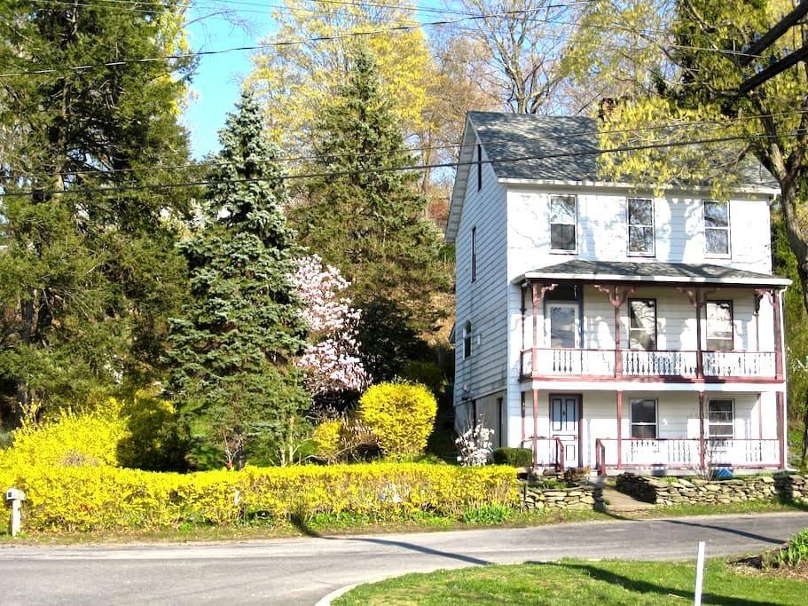 Beautiful Historic House on Hudson - Hyde Park - House