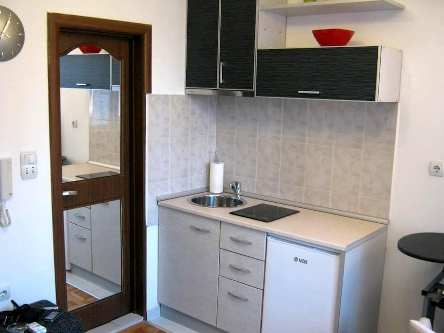 Great apartment in downtown Nis - Nis
