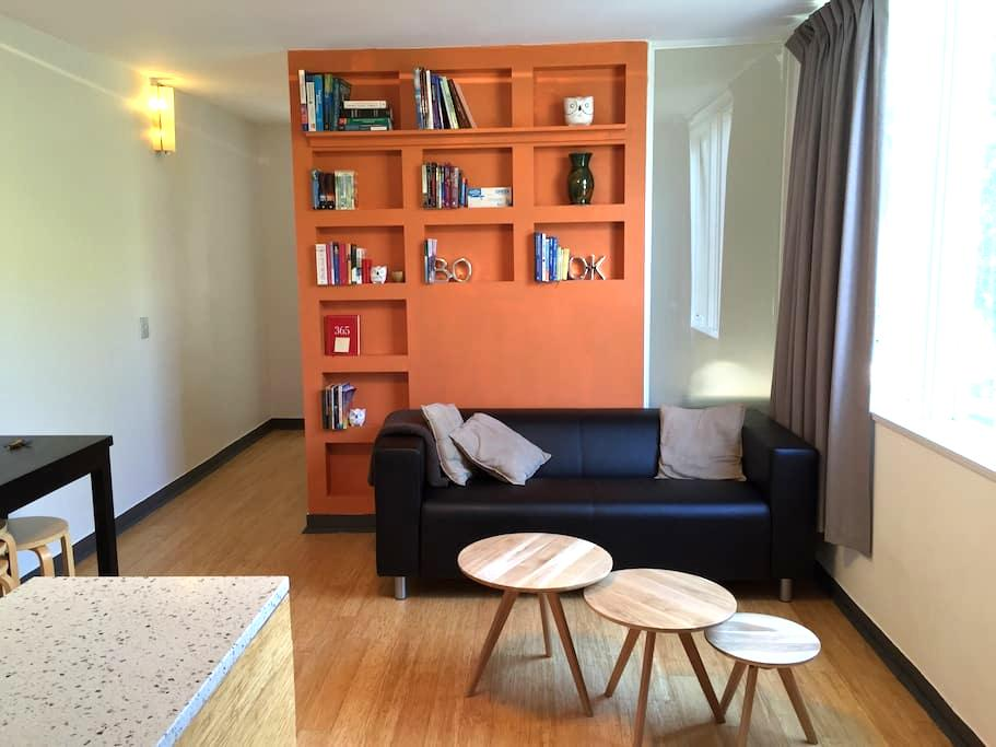Sunny and Leafy South Yarra base - South Yarra - Appartement