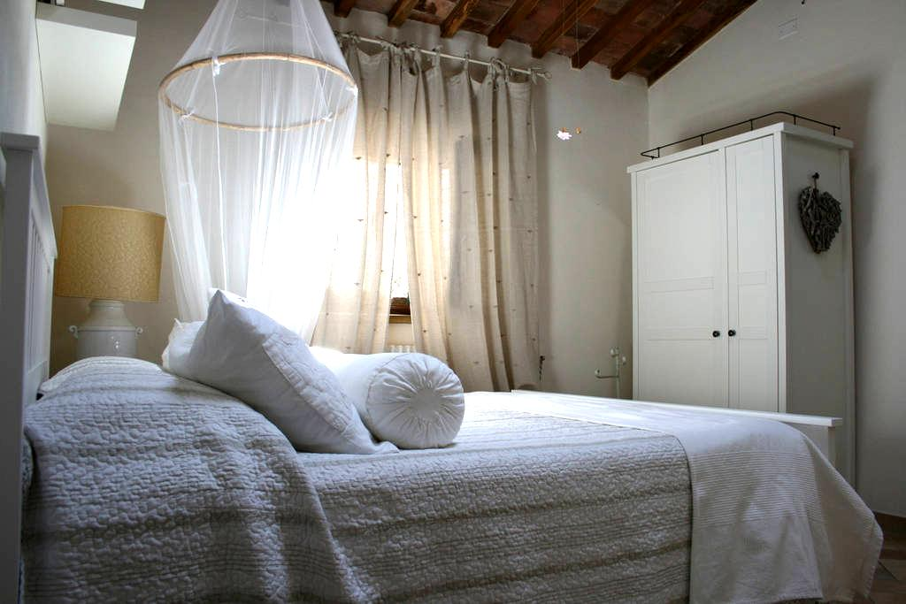 Bed and Breakfast La Bouganville - Rosignano Marittimo - Oda + Kahvaltı