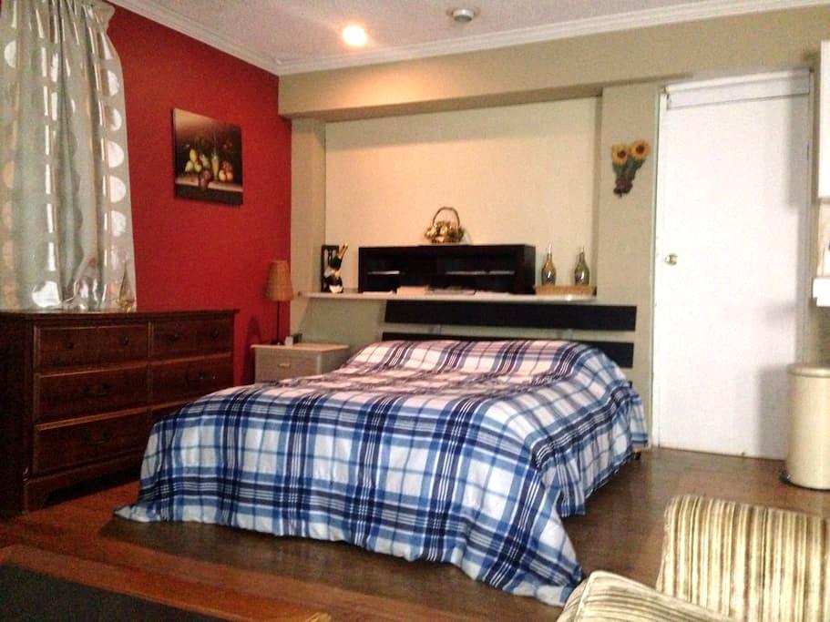 Studio with Kitchen in Tampa - Tampa - Apartament
