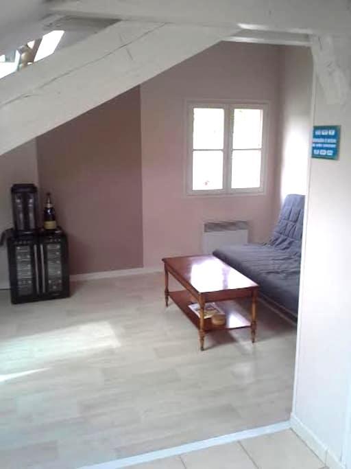 Appartement coeur de ville Provins - Provins - Wohnung