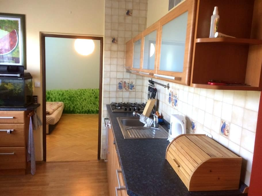 Nice, fully equipped 3 bedroom apartment + Garage - Brno - Daire