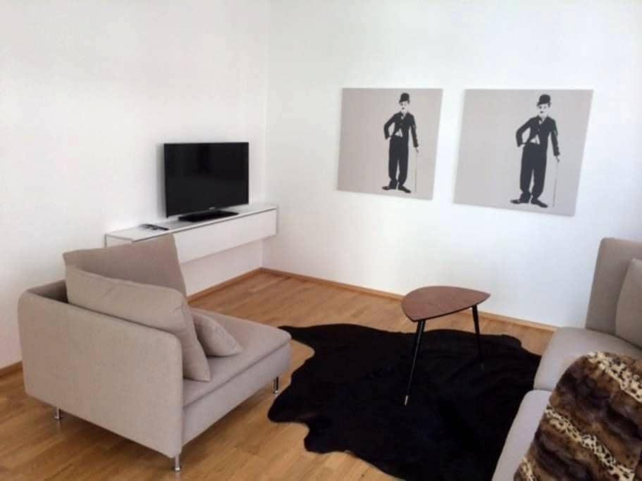 2-4 Zi., 50-78qm, neumöbliert 2014 - Biberach an der Riß - Apartment