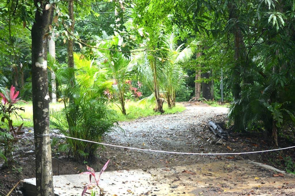 Mal Pais private room, jungle & beach - Malpais - Rumah