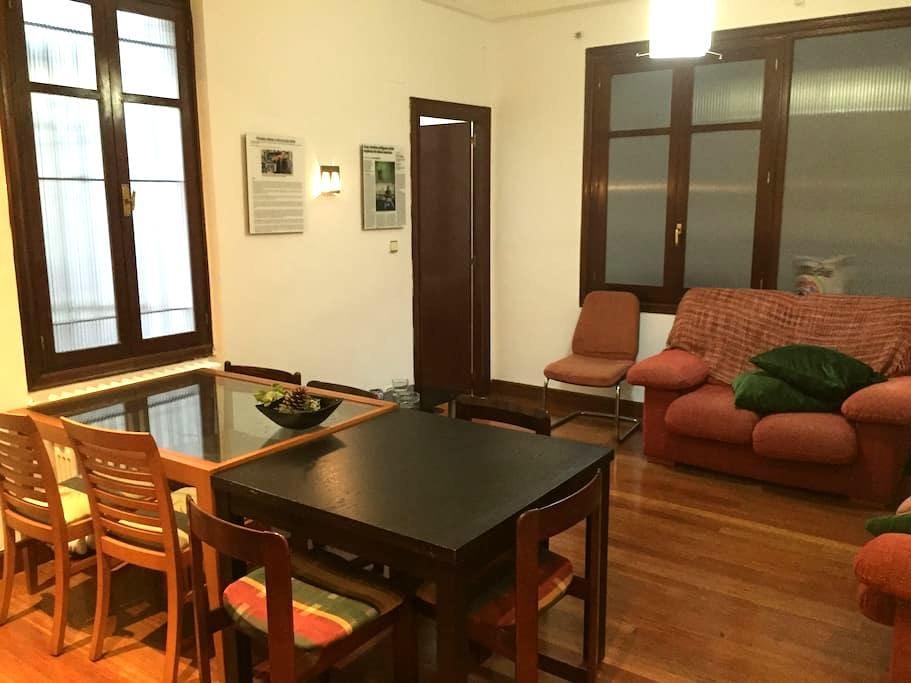 HABITACION EN CENTRO DE BILBAO - Bilbao - Apartemen