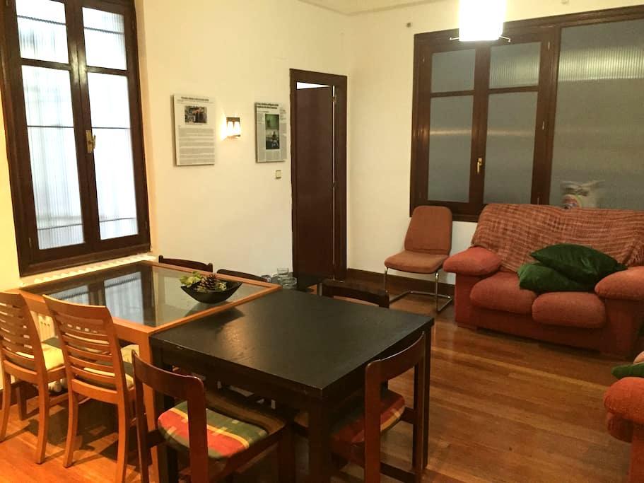 HABITACION EN CENTRO DE BILBAO - Bilbao - Apartmen