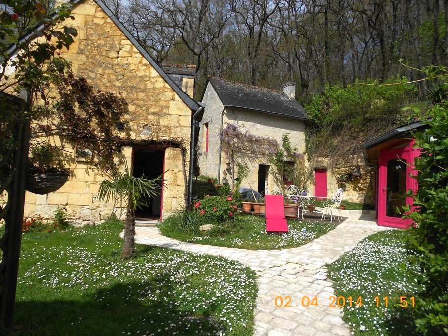maison tourangelle,pleine de charme - La Roche-Clermault - Rumah