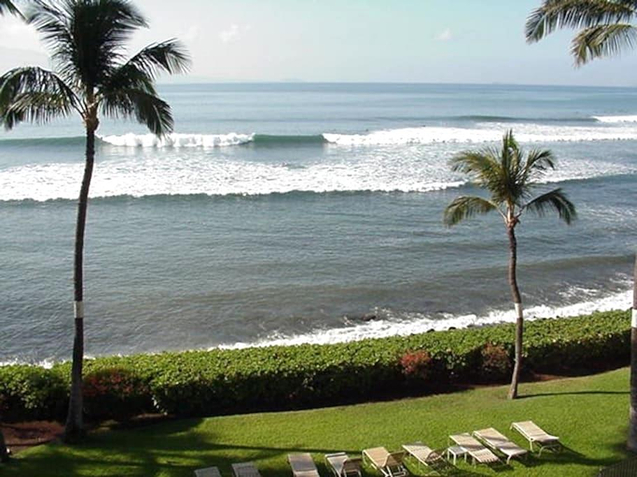 OCEANFRONT APT., PRIVATE LANAI !!! -  Ma'alaea, Wailuku