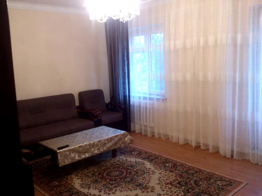 2 bedrooms apartment, in city center - Tashkent - 公寓