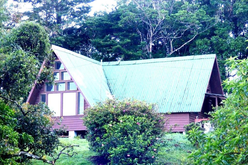 """La Guatusa"", (The Agouti), a Green Paradise Home - Monteverde - House"