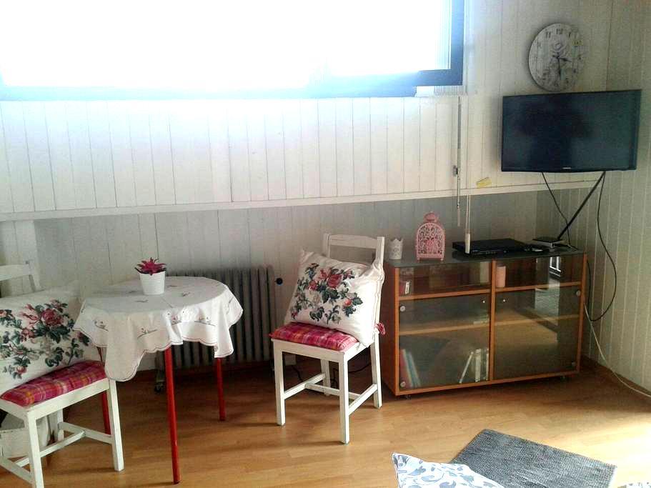 Zimmer mit Bad und kleine küche . - Gordola - Huoneisto