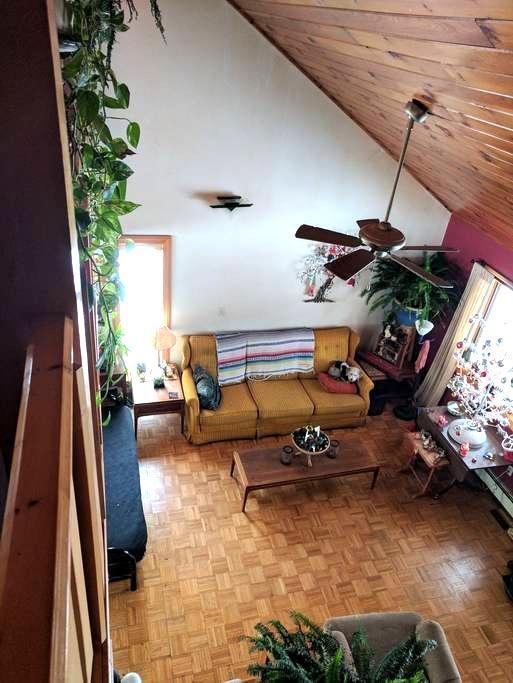 Virginia's Cottage - Akron