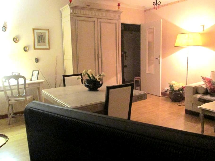 APT 67 M² CTRE de  RODEZ - Mus. SOULAGES proximité - Rodez - Lägenhet