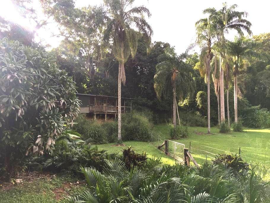 secluded rustic rainforest eco-cabin retreat - Speewah - Stuga