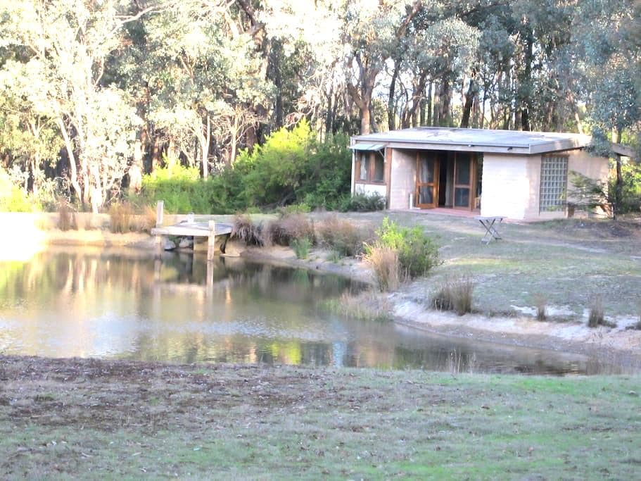 Home Among the Gum Trees  - Panton Hill - Cottage