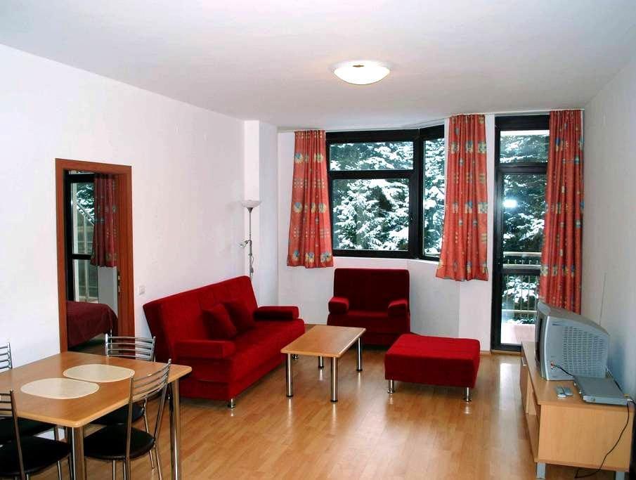 Ski Apartment in Borovets, Bulgaria - Borovets - Apartment