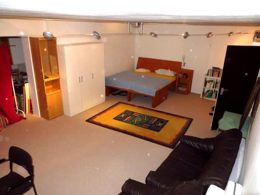 Großes Zimmer in großem Haus bei netten Menschen.. - Sankt Leon-Rot - Dům