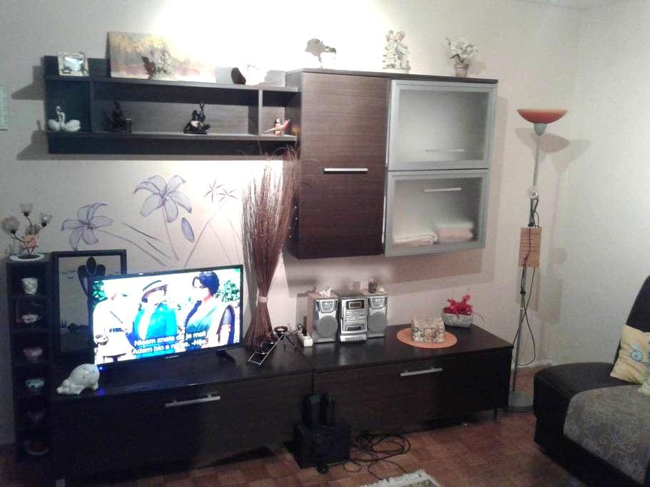 Pleasant apartment in Osijek - Osijek - Huoneisto