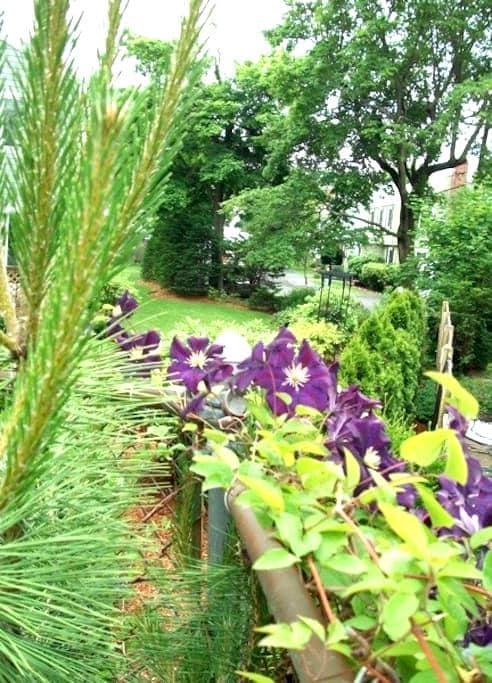 Garden Suite - Swampscott - Byt