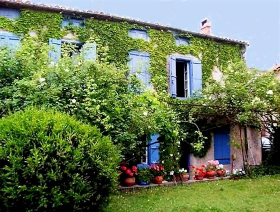 Charming village house with pool in South France - Caudeval - House