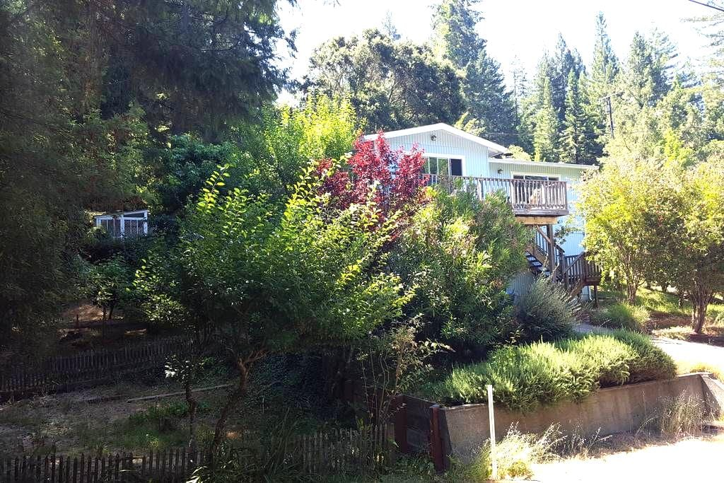 The Wright Cottage - Walk to Guerneville - Hot Tub - Guerneville - 小木屋