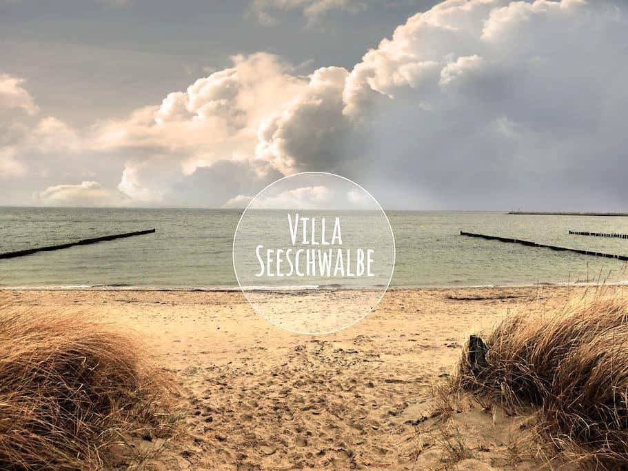 Villa Seeschwalbe  Breege-Juliusruh - Breege