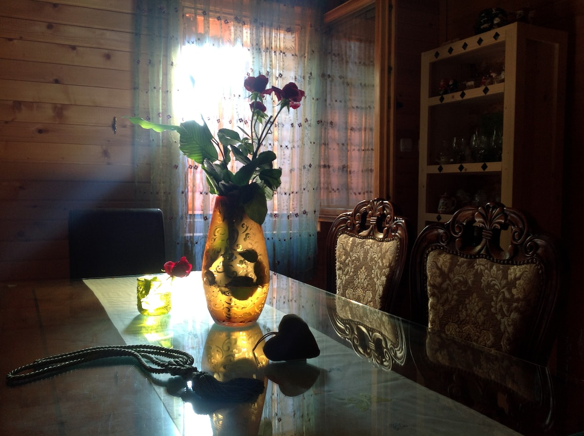 lodge house tara in kolasin, mne - houses for rent in kolašin, Esszimmer dekoo
