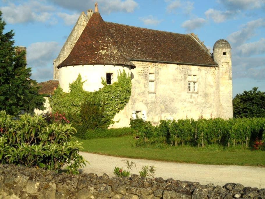 Charming Castle near by Saint Emilion - Guillac - 住宿加早餐
