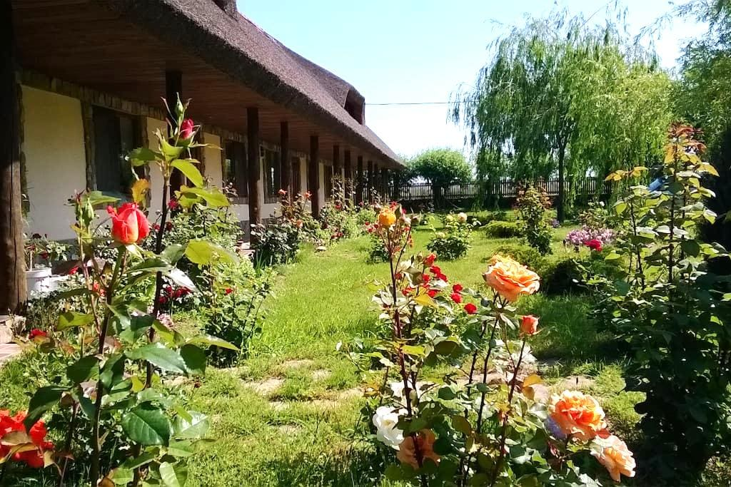 Traditional rooms in the heart of Danube Delta - Murighiol - Flat