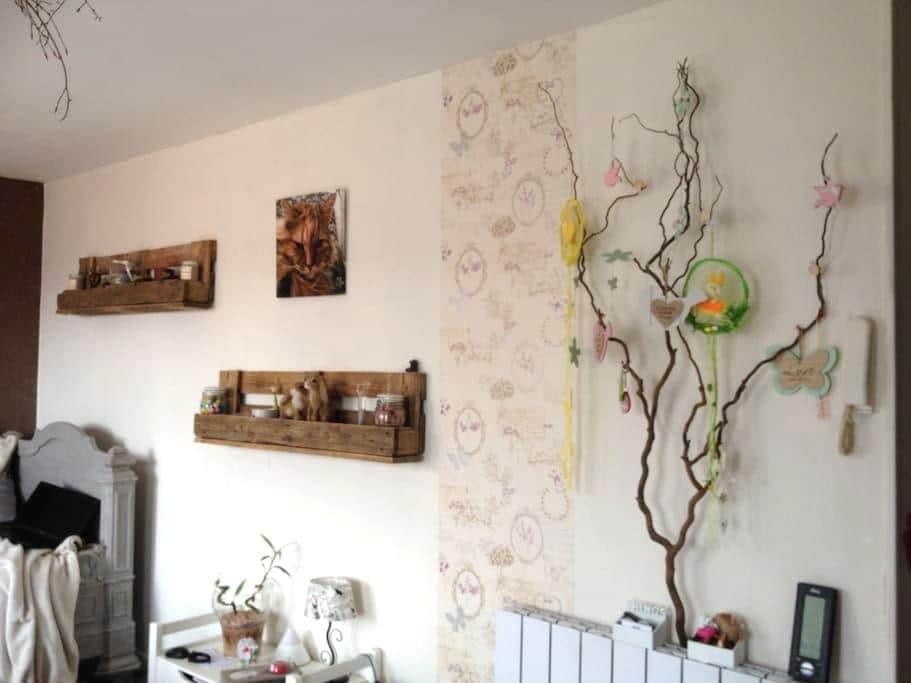 Chambre dans F2 grande terrasse - Chantraine - Apartment