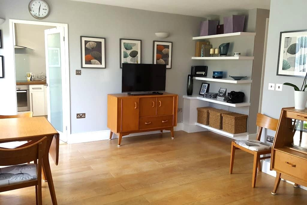 Vintage Ground Floor Flat By Wandsworth Commmon - London