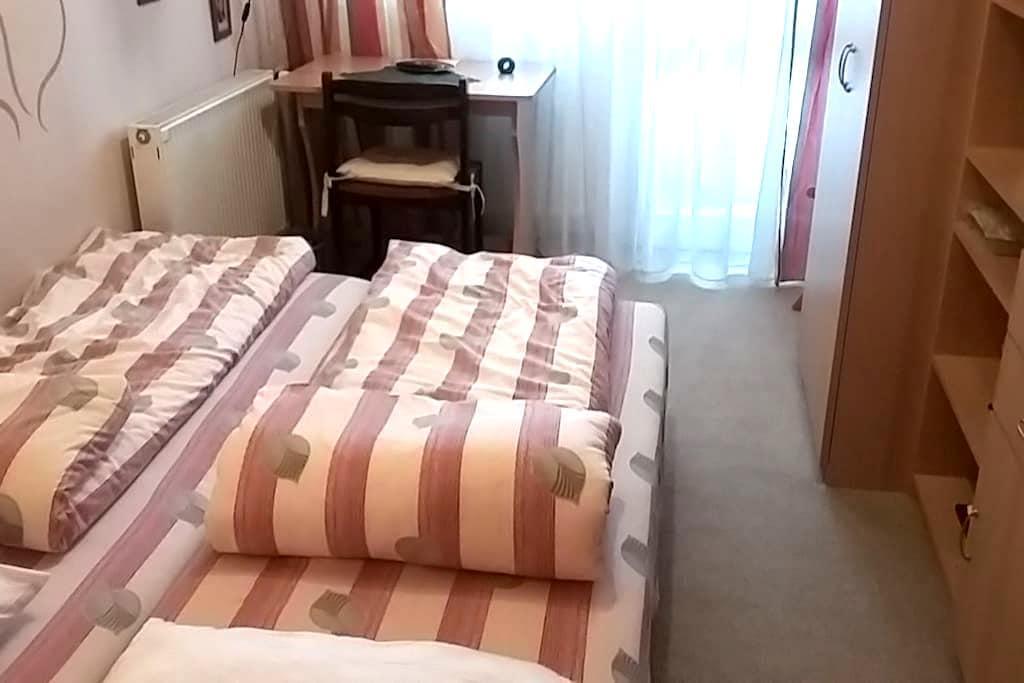 Vidám , barátságos házigazda ,kellemes szoba,WIFI. - Budapest - Flat