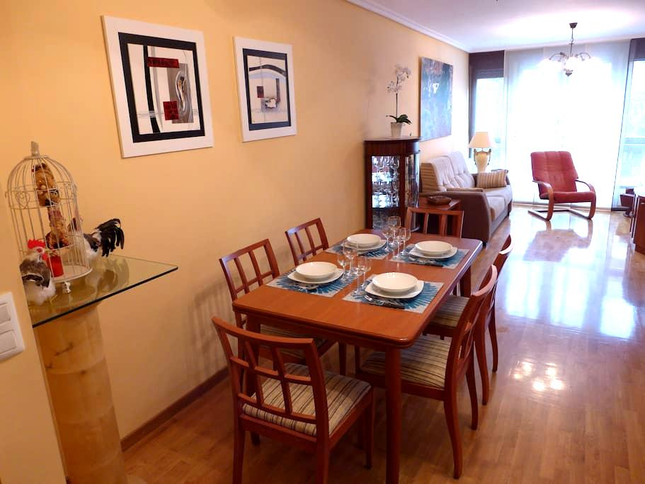 Coqueto y agradable  apartamento - Santo Domingo de la Calzada - Lejlighed