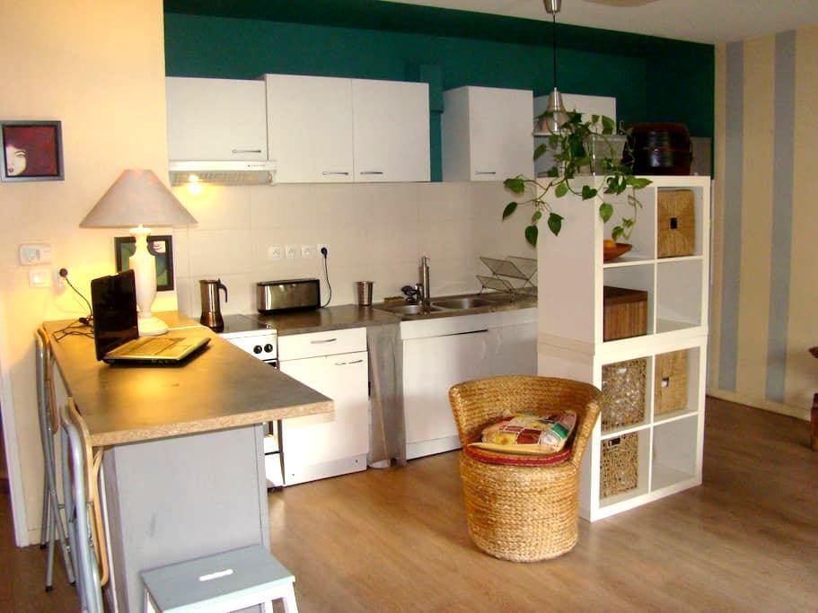 Chambre, appartement calme, terasse, métro - Ramonville Saint Agne - Apartament