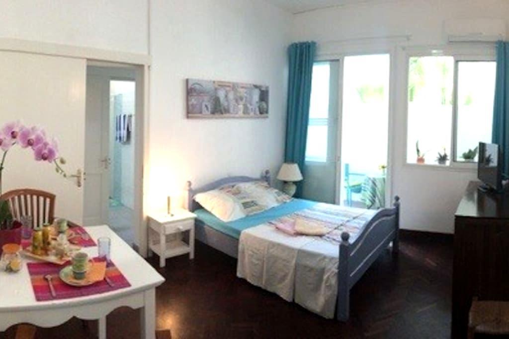 Adorable appartement au coeur de Saint-Denis - Centre - Lägenhet