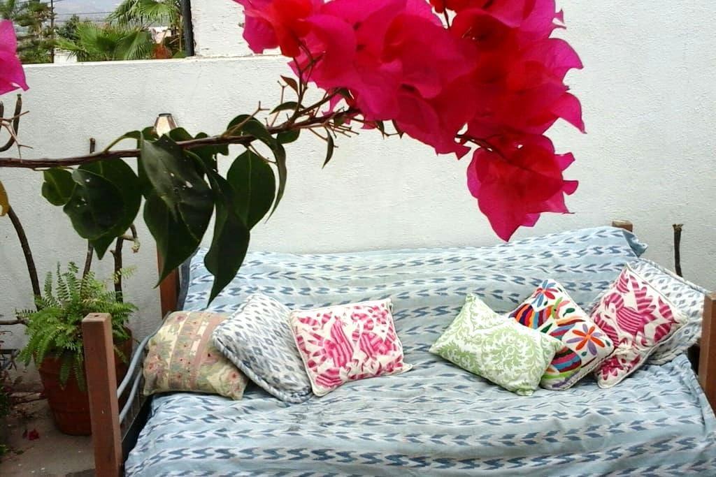 AMAZING DEAL lovely private Studio! - San José del Cabo - Apartmen