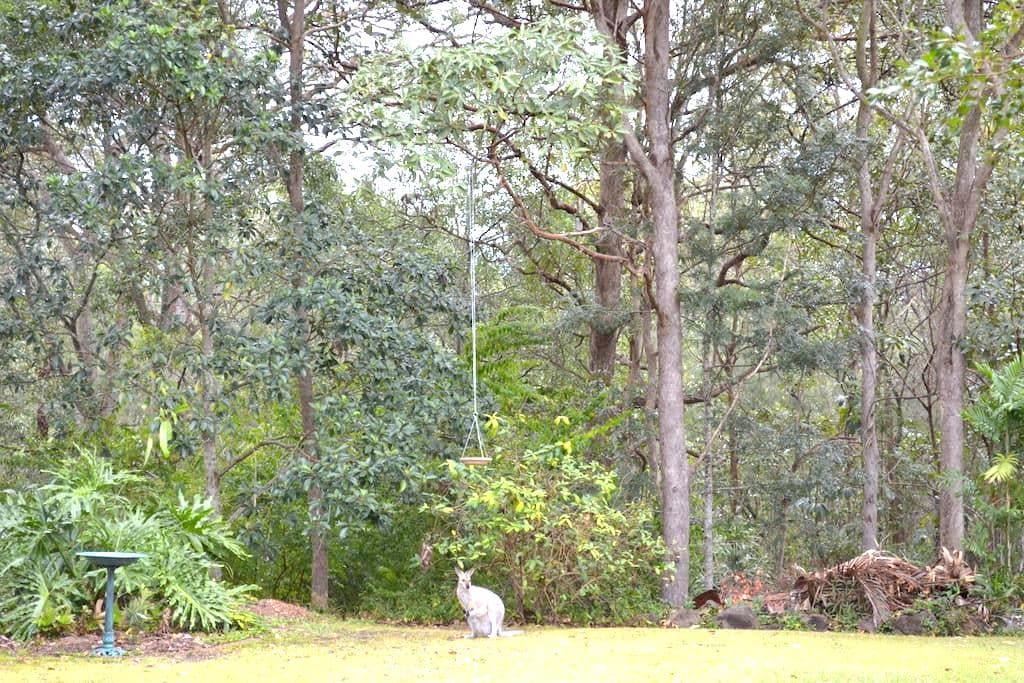 Private treescaped apartment . - Capalaba - Apartment