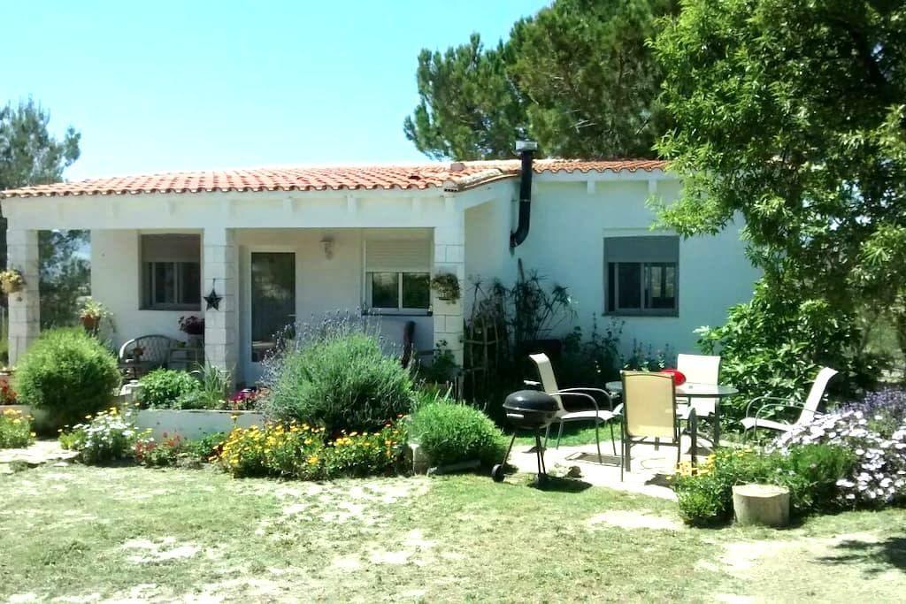 Peaceful Country Casa - Villar del Arzobispo - Chalet