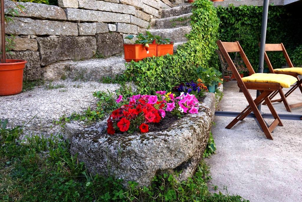 Country house, great for birwatching. - Montalegre