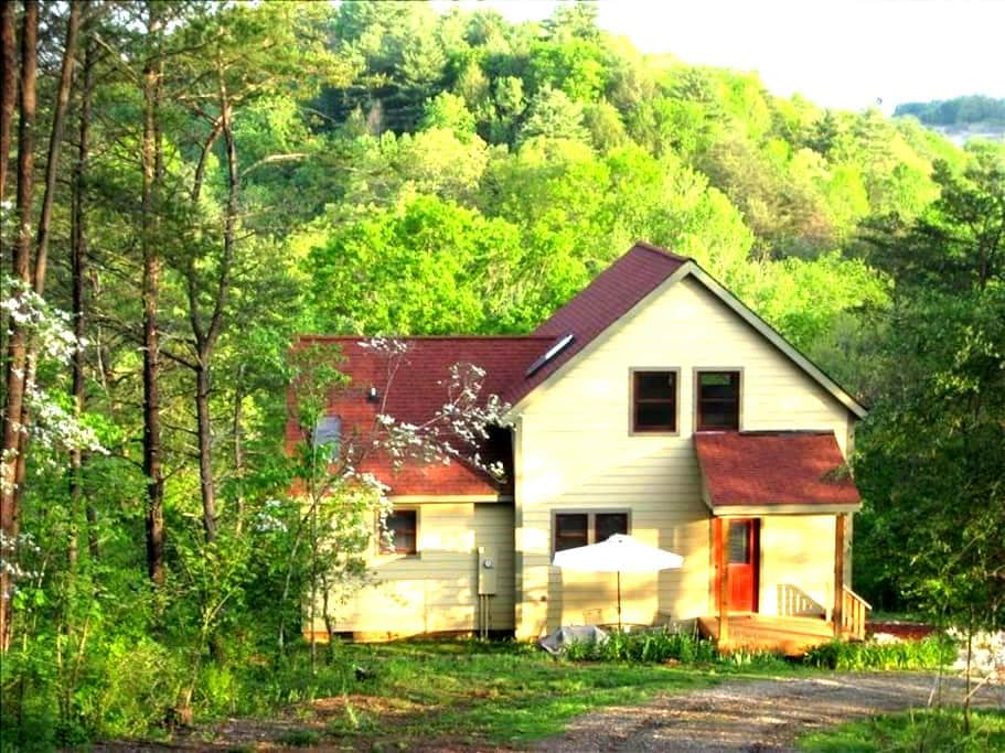 Want TOTAL privacy near Asheville?? - Alexander - Hus