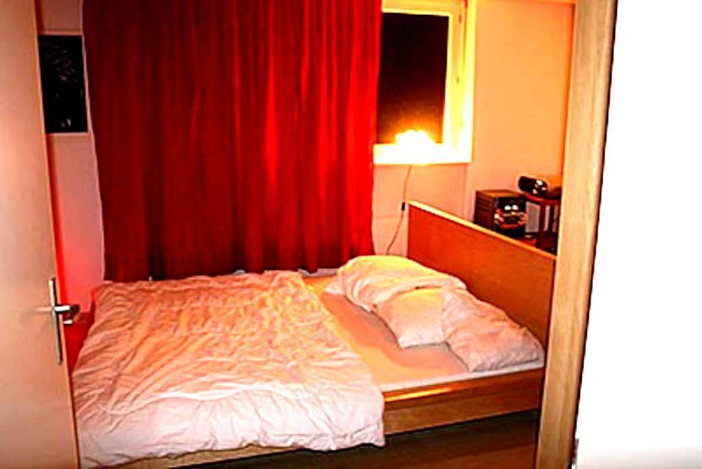 Privateroom 10 min. from Basel. - Kaiseraugst - Apartament