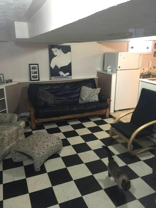 Granny suite in quiet family home - Fredericton - Apartment