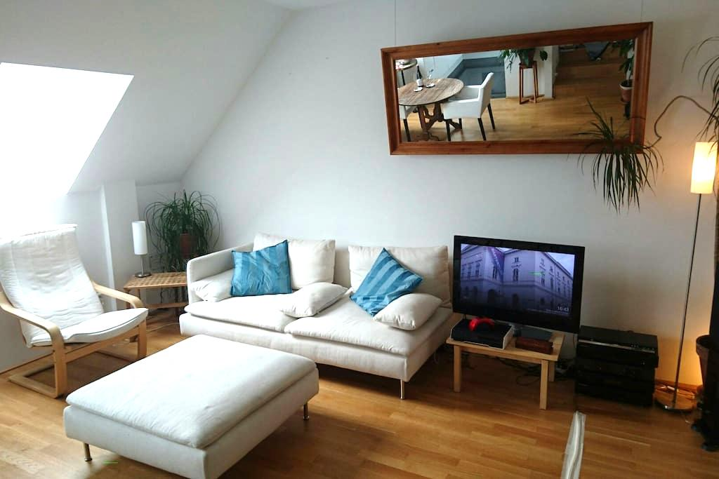 Big, nice room in shared penthouse, very central. - Vienna - Appartamento
