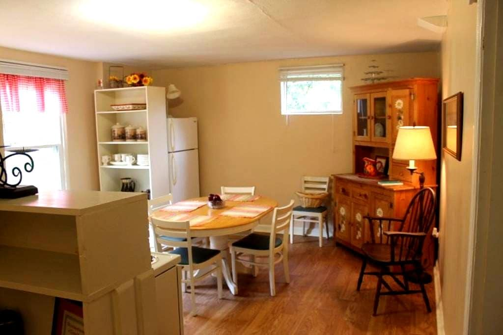 Private Basement Apt./Full kitchen/No cleaning fee - Knoxville - Dom