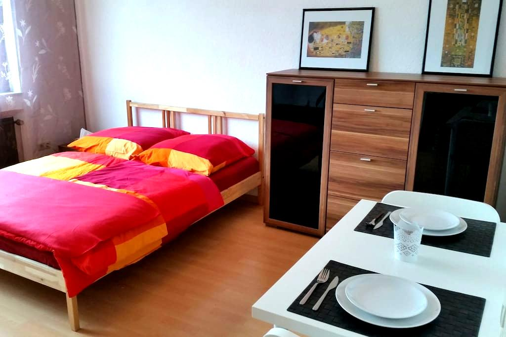 1 Zimmer Appartement nahe Rhein - Mainz - Wohnung