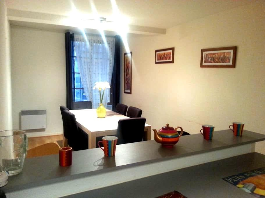 Spacious apartement in the historic city centre - Clermont-Ferrand - Appartement